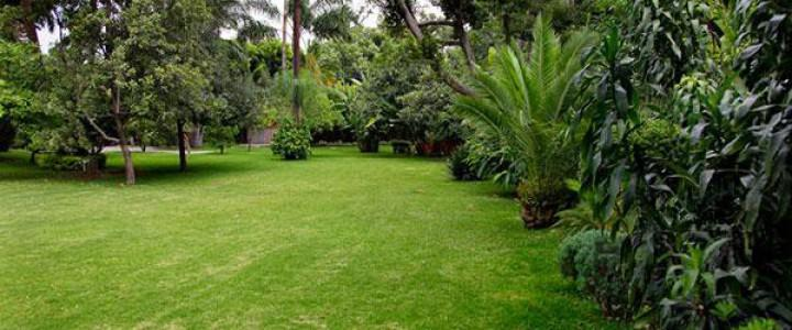 Agao0208 instalaci n y mantenimiento de jardines y zonas for Mantenimiento de jardines
