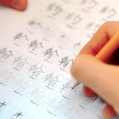 Curso de Chino Mandarin. Nivel Oficial A1 A2 (Nivel 1 HSK Nivel 2 HSK)