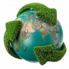 Gestión del medio ambiente